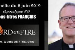 Apocalypse (6e de 6 vidéos) : L'Esprit et l'Épouse / Robert Barron (125e)