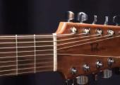 3e présentation : guitare Norman B-20 modifiée