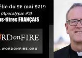 Apocalypse (5e de 5 vidéos) / Robert Barron (124e)